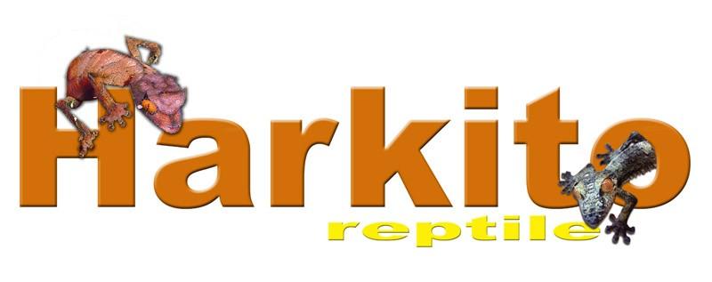 www.harkitoreptile.com